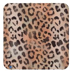 leopard-apricot