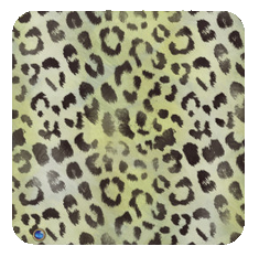 leopard-chartreuse