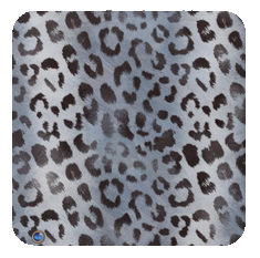 leopard-slate